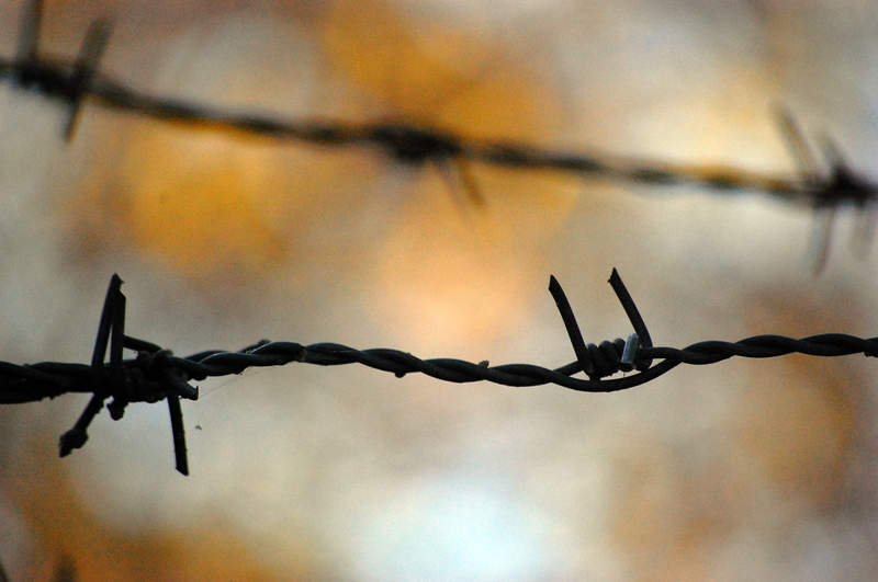Barbed-wire-fence1304f
