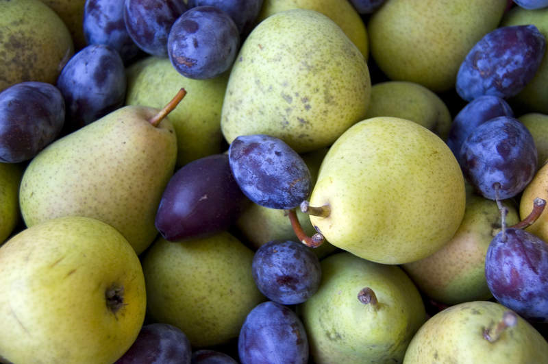Pears-and-prunes4freep
